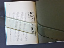 P1160847-1