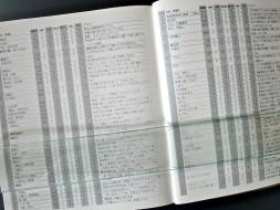 P1190111-1